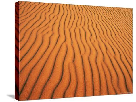 Patterns in Sand Dunes in Erg Chebbi Sand Sea, Sahara Desert, Near Merzouga, Morocco-Lee Frost-Stretched Canvas Print