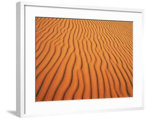 Patterns in Sand Dunes in Erg Chebbi Sand Sea, Sahara Desert, Near Merzouga, Morocco-Lee Frost-Framed Art Print