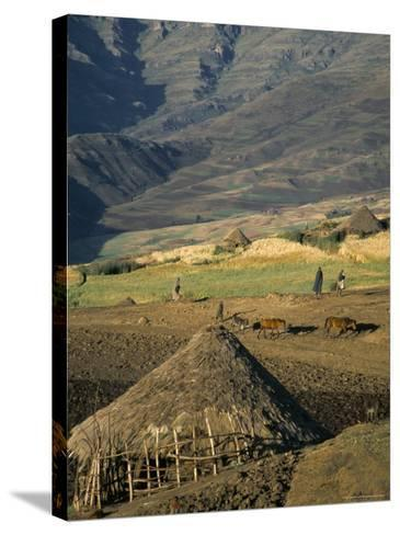 Debirichwa Village in Early Morning, Simien Mountains National Park, Ethiopia-David Poole-Stretched Canvas Print