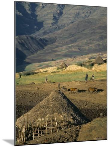 Debirichwa Village in Early Morning, Simien Mountains National Park, Ethiopia-David Poole-Mounted Photographic Print