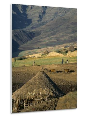 Debirichwa Village in Early Morning, Simien Mountains National Park, Ethiopia-David Poole-Metal Print