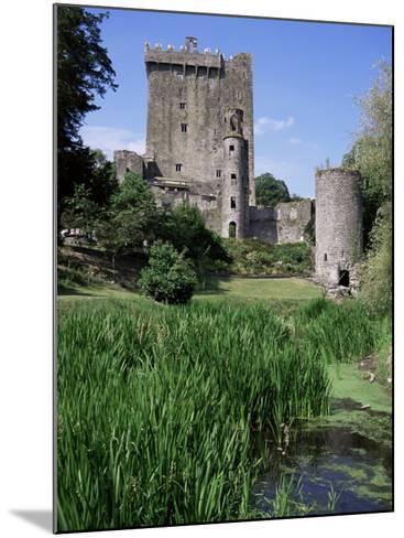 Blarney Castle, County Cork, Munster, Eire (Republic of Ireland)-J Lightfoot-Mounted Photographic Print