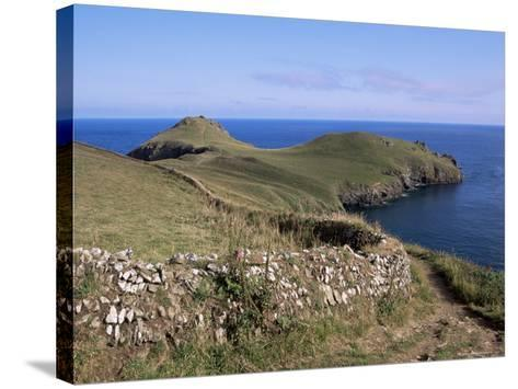 Pentire Point, Cornwall, England, United Kingdom-J Lightfoot-Stretched Canvas Print