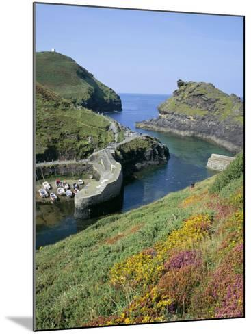 Boscastle Harbour, Boscastle, Cornwall, England, United Kingdom-Roy Rainford-Mounted Photographic Print