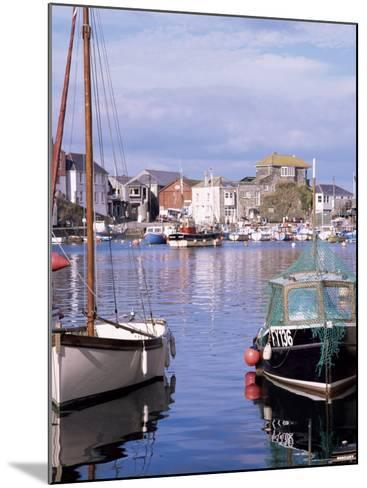 The Harbour, Mevagissey, Cornwall, England, United Kingdom-Roy Rainford-Mounted Photographic Print