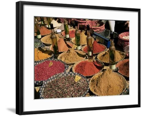 Herbs and Spices, Aix En Provence, Bouches Du Rhone, Provence, France-Roy Rainford-Framed Art Print