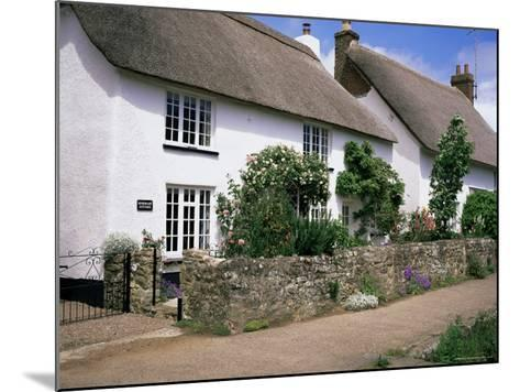 Thatched Cottages, Otterton, South Devon, England, United Kingdom-Roy Rainford-Mounted Photographic Print