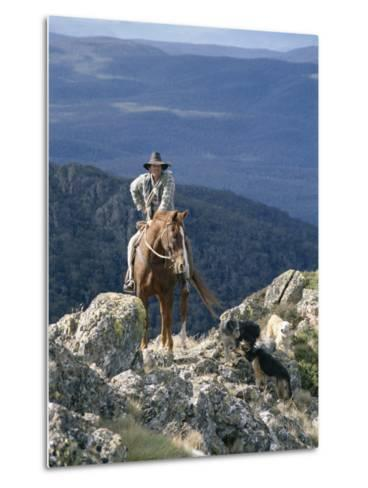 Man on Horse with Dogs, 'The Man from Snowy River', Victoria, Australia-Claire Leimbach-Metal Print