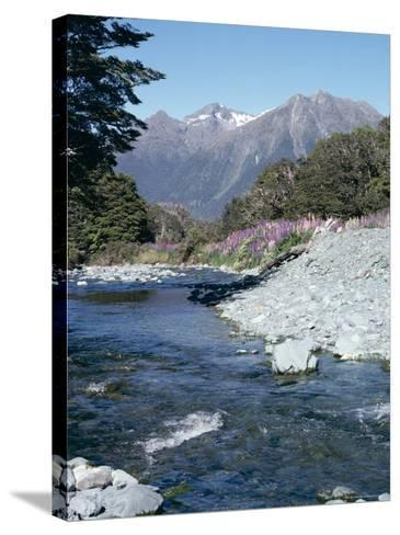 Cascade Creek and Stuart Mountains, South Island, New Zealand-Ian Griffiths-Stretched Canvas Print