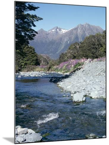 Cascade Creek and Stuart Mountains, South Island, New Zealand-Ian Griffiths-Mounted Photographic Print