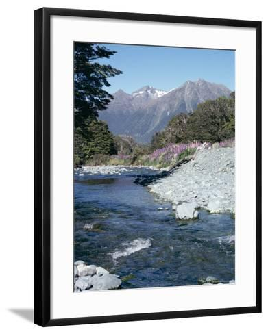 Cascade Creek and Stuart Mountains, South Island, New Zealand-Ian Griffiths-Framed Art Print