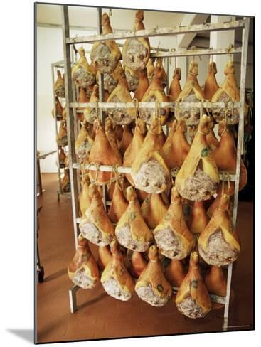 Parma Hams on Curing Racks, Near Pavullo, Emilia-Romagna, Italy-Ian Griffiths-Mounted Photographic Print