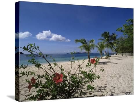 Palm Island, Near Young Island, the Grenadines, Windward Islands-Fraser Hall-Stretched Canvas Print
