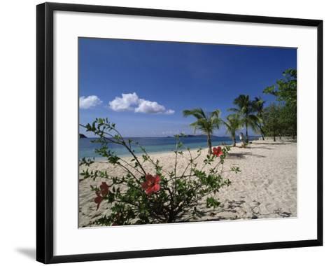 Palm Island, Near Young Island, the Grenadines, Windward Islands-Fraser Hall-Framed Art Print