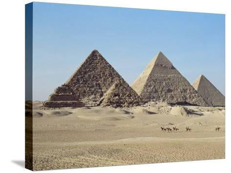 Pyramids at Giza, Unesco World Heritage Site, Near Cairo, Egypt, North Africa, Africa-John Ross-Stretched Canvas Print