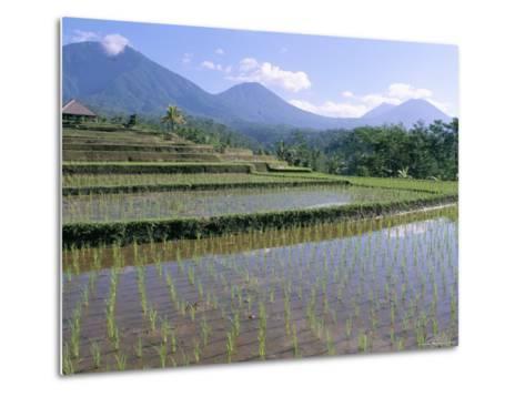 Rice Paddy Fields in Centre of the Island, Bali, Indonesia, Southeast Asia-Bruno Morandi-Metal Print