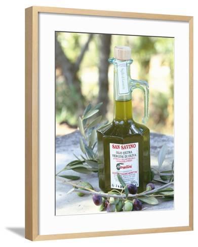 Olive Oil, Tuscany, Italy-Bruno Morandi-Framed Art Print