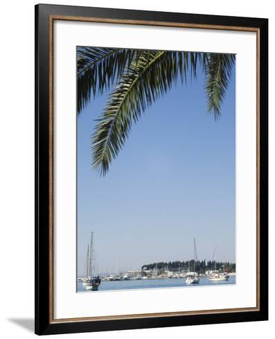 Harbour Yachts, Split, Dalmatian Coast, Croatia-Christian Kober-Framed Art Print