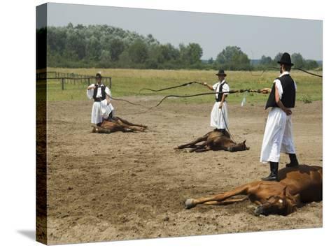 Hungarian Cowboy Horse Show, Bugaci Town, Kiskunsagi National Park, Hungary-Christian Kober-Stretched Canvas Print