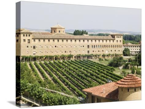 Vineyard and Monastery, Olite, Navarra, Euskadi, Spain-Christian Kober-Stretched Canvas Print