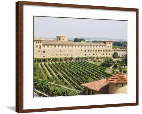 Vineyard and Monastery, Olite, Navarra, Euskadi, Spain-Christian Kober-Framed Art Print