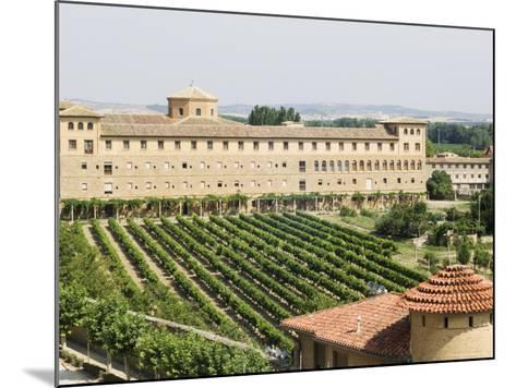 Vineyard and Monastery, Olite, Navarra, Euskadi, Spain-Christian Kober-Mounted Photographic Print