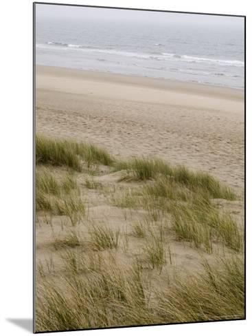 Curracloe Beach, County Wexford, Leinster, Republic of Ireland (Eire)-Sergio Pitamitz-Mounted Photographic Print