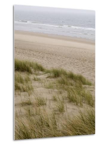 Curracloe Beach, County Wexford, Leinster, Republic of Ireland (Eire)-Sergio Pitamitz-Metal Print
