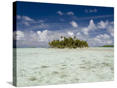 Sharks, Blue Lagoon, Rangiroa, Tuamotu Archipelago, French Polynesia Islands-Sergio Pitamitz-Stretched Canvas Print