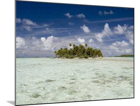 Sharks, Blue Lagoon, Rangiroa, Tuamotu Archipelago, French Polynesia Islands-Sergio Pitamitz-Mounted Photographic Print