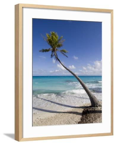 Fakarawa, Tuamotu Archipelago, French Polynesia Islands-Sergio Pitamitz-Framed Art Print