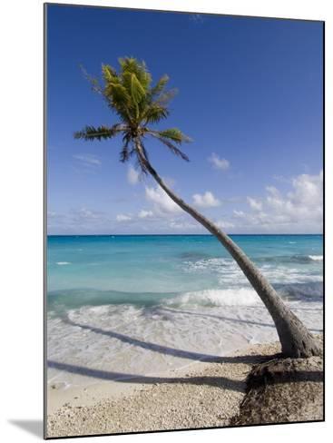 Fakarawa, Tuamotu Archipelago, French Polynesia Islands-Sergio Pitamitz-Mounted Photographic Print