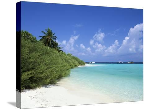 Asdu Island, North Male Atoll, Maldives, Indian Ocean-Sergio Pitamitz-Stretched Canvas Print