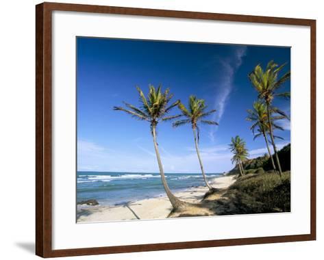 Praia Do Amor, Pipa (Natal), Rio Grande Do Norte State, Brazil, South America-Sergio Pitamitz-Framed Art Print