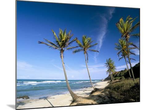 Praia Do Amor, Pipa (Natal), Rio Grande Do Norte State, Brazil, South America-Sergio Pitamitz-Mounted Photographic Print