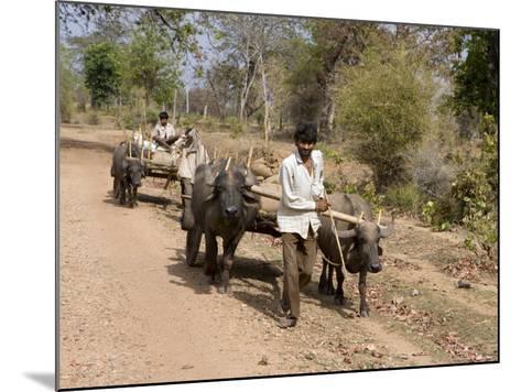 Bullock Carts, Tala, Bandhavgarh National Park, Madhya Pradesh, India-Thorsten Milse-Mounted Photographic Print