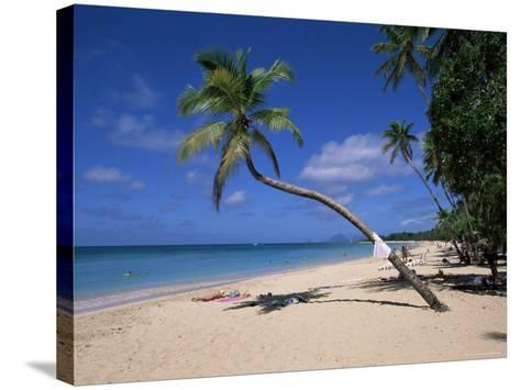 Les Salines Beach, Near Sainte Anne, Martinique, Lesser Antilles-Yadid Levy-Stretched Canvas Print