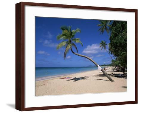 Les Salines Beach, Near Sainte Anne, Martinique, Lesser Antilles-Yadid Levy-Framed Art Print
