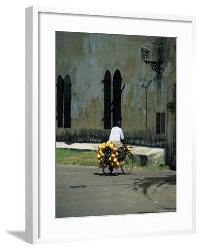 Coconut Seller Riding His Bicycle, Galle, Sri Lanka-Yadid Levy-Framed Art Print
