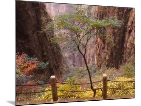 Autumn Colors, Xihai (West Sea) Valley, Mount Huangshan (Yellow Mountain), Anhui Province-Jochen Schlenker-Mounted Photographic Print