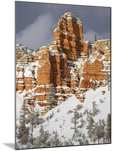 Red Rock Formations, Red Canyon, Dixie National Forest, Utah, USA-James Hager-Mounted Photographic Print