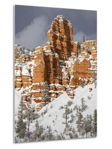 Red Rock Formations, Red Canyon, Dixie National Forest, Utah, USA-James Hager-Metal Print