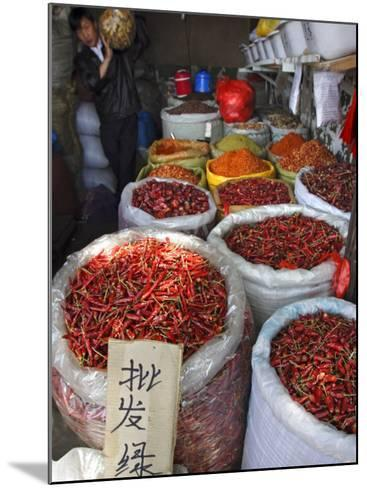 Chilli Peppers and Spices on Sale in Wuhan, Hubei Province, China-Andrew Mcconnell-Mounted Photographic Print