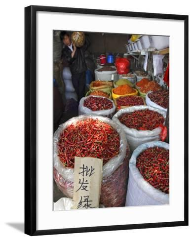 Chilli Peppers and Spices on Sale in Wuhan, Hubei Province, China-Andrew Mcconnell-Framed Art Print