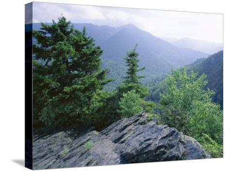 View from the Alum Cave Bluffs Trail in Great Smoky Mountains National Park, Tennessee, USA-Robert Francis-Stretched Canvas Print
