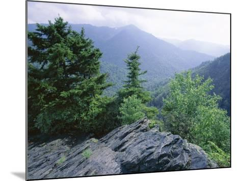 View from the Alum Cave Bluffs Trail in Great Smoky Mountains National Park, Tennessee, USA-Robert Francis-Mounted Photographic Print