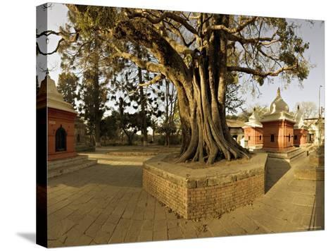 Panorama Produced by Joining Several Images, at One of the Holiest Hindu Sites, Kathmandu-Don Smith-Stretched Canvas Print