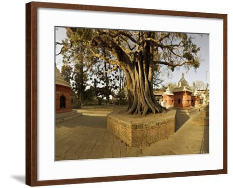 Panorama Produced by Joining Several Images, at One of the Holiest Hindu Sites, Kathmandu-Don Smith-Framed Art Print