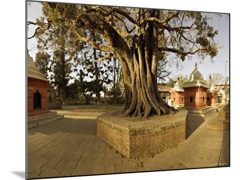 Panorama Produced by Joining Several Images, at One of the Holiest Hindu Sites, Kathmandu-Don Smith-Mounted Photographic Print