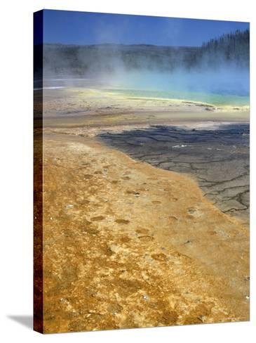 Geyserite Terraces Coloured by Algal Mats, Midway Geyser Basin, Unesco World Heritage Site-Tony Waltham-Stretched Canvas Print